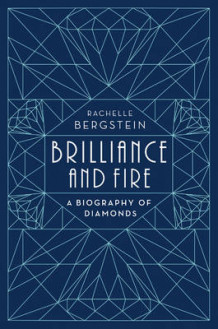 Brilliance and Fire av Rachelle Bergstein (Innbundet)