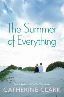 The Summer of Everything av Catherine Clark (Heftet)