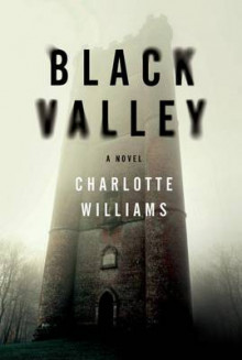 Black Valley av Charlotte Williams (Heftet)