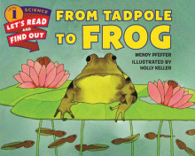 From Tadpole to Frog av Wendy Pfeffer (Heftet)