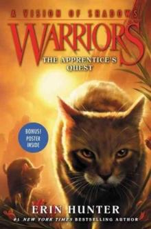 The apprentice's quest av Erin Hunter (Heftet)