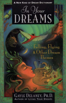 In Your Dreams av Gayle M.V. Delaney (Heftet)