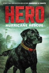 Omslag - Hero: Hurricane Rescue