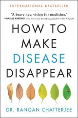 Omslag - How to Make Disease Disappear