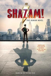 Shazam!: The Junior Novel av Calliope Glass (Heftet)