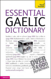Essential Gaelic Dictionary av Boyd Robertson og Lecturer in Law Iain McDonald (Heftet)