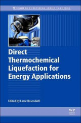 Omslag - Direct Thermochemical Liquefaction for Energy Applications