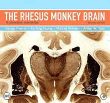 The Rhesus Monkey Brain in Stereotaxic Coordinates av George Paxinos, Xu-Feng Huang, Michael Petrides og Arthur W. Toga (Innbundet)
