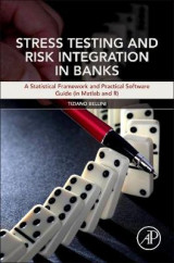 Omslag - Stress Testing and Risk Integration in Banks