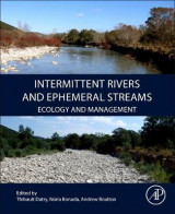 Omslag - Intermittent Rivers and Ephemeral Streams