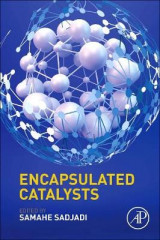 Omslag - Encapsulated Catalysts