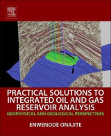 Omslag - Practical Solutions to Integrated Oil and Gas Reservoir Analysis