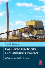 Omslag - Coal-Fired Electricity and Emissions Control