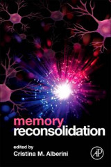 Omslag - Memory Reconsolidation