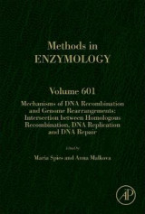 Omslag - Mechanisms of DNA Recombination and Genome Rearrangements: Intersection Between Homologous Recombination, DNA Replication and DNA Repair: Volume 601