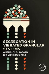 Segregation in Vibrated Granular Systems av Anthony D. Rosato og Christopher Windows-Yule (Heftet)