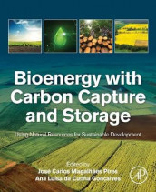 Bioenergy with Carbon Capture and Storage (Heftet)