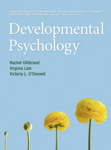 Developmental Psychology av Virginia Lam, Rachel Gillibrand og Victoria L. O'Donnell (Heftet)