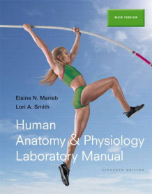 Human Anatomy & Physiology Laboratory Manual, Main Version av Elaine N. Marieb og Lori A. Smith (Heftet)