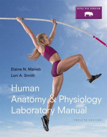 Human Anatomy & Physiology Laboratory Manual, Fetal Pig Version av Elaine N. Marieb og Lori A. Smith (Heftet)