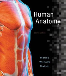 Human Anatomy Plus Masteringa&p with Pearson Etext -- Access Card Package av Elaine N Marieb (Blandet mediaprodukt)