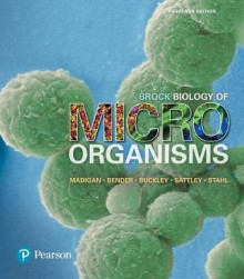 Brock Biology of Microorganisms Plus Masteringmicrobiology with Pearson Etext -- Access Card Package av Michael T Madigan, Kelly S Bender, Daniel H Buckley, W Matthew Sattley og David A Stahl (Blandet mediaprodukt)
