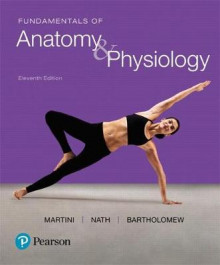 Fundamentals of Anatomy & Physiology Plus Masteringa&p with Pearson Etext -- Access Card Package av Frederic H Martini (Blandet mediaprodukt)