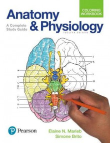 Anatomy and Physiology Coloring Workbook av Elaine N. Marieb og Simone Brito (Heftet)