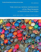 Omslag - The Social Work Experience