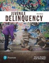 Omslag - Juvenile Delinquency (Justice Series), Student Value Edition