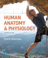 Omslag - Human Anatomy & Physiology Plus Mastering A&p with Pearson Etext -- Access Card Package