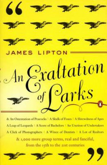 Exaltation of Larks av James Lipton (Heftet)