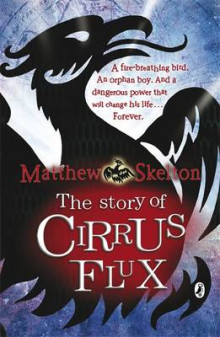 The Story of Cirrus Flux av Matthew Skelton (Heftet)