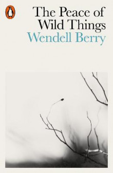 The Peace of Wild Things av Wendell Berry (Heftet)