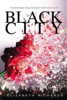 Black City av Elizabeth Richards (Heftet)