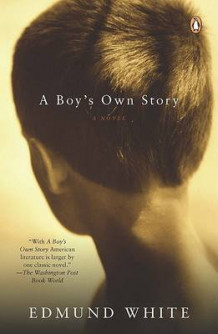 A Boy's Own Story av Edmund White (Heftet)