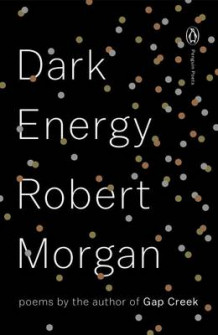 Dark Energy av Robert Morgan (Heftet)