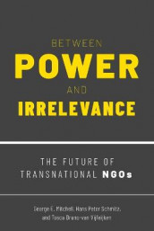 Between Power and Irrelevance av Tosca Bruno-van Vijfeijken, George E. Mitchell og Hans Peter Schmitz (Heftet)