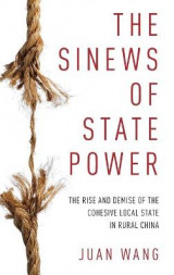 Omslag - The Sinews of State Power