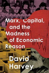 Omslag - Marx, Capital, and the Madness of Economic Reason
