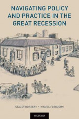 Omslag - Navigating Policy and Practice in the Great Recession