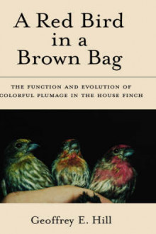 A Red Bird in a Brown Bag av Geoffrey E. Hill (Innbundet)