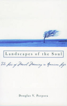 Landscapes of the Soul av Douglas V. Porpora (Heftet)