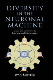Diversity in the Neuronal Machine av Ivan Soltesz (Innbundet)