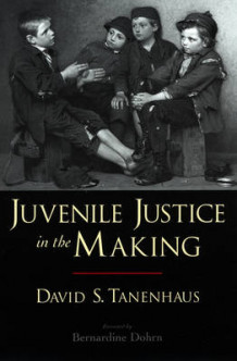 Juvenile Justice in the Making av David S. Tanenhaus (Heftet)