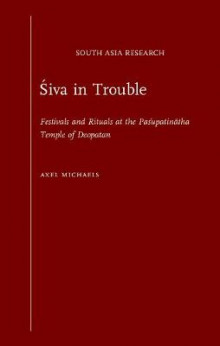 Siva in Trouble av Axel Michaels (Innbundet)