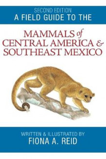 A Field Guide to the Mammals of Central America and Southeast Mexico av Fiona A. Reid (Heftet)