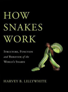 How Snakes Work av Harvey B. Lillywhite (Innbundet)