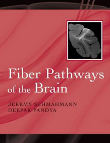 Fiber Pathways of the Brain av Jeremy D. Schmahmann og Deepak Pandya (Heftet)