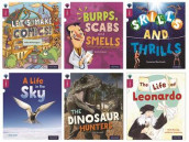 Oxford Reading Tree inFact: Level 10: Mixed Pack of 6 av Rob Alcraft, Robin Etherington, Anita Ganeri, Brita Granstorm, Cameron Macintosh, Mick Manning og Kate Scott (Samlepakke)